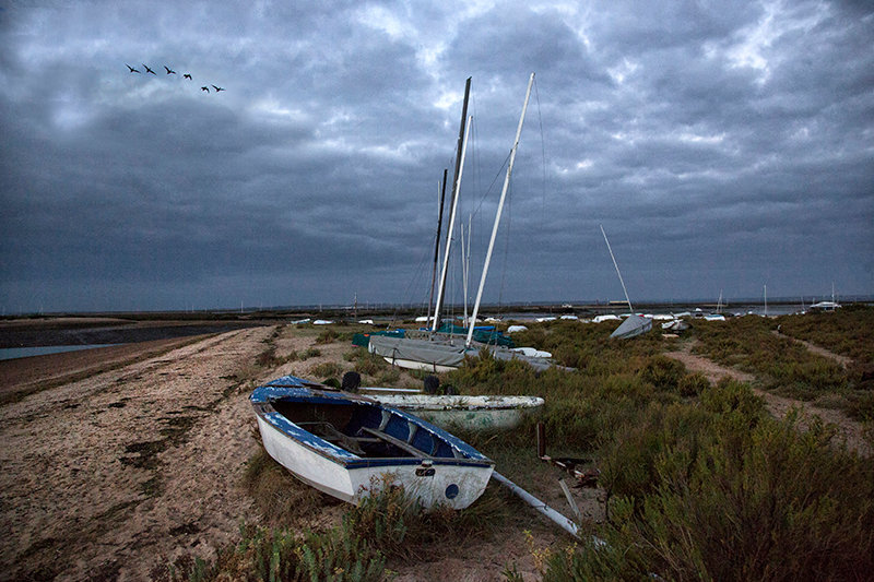 Boats and Brent - Shingle Point