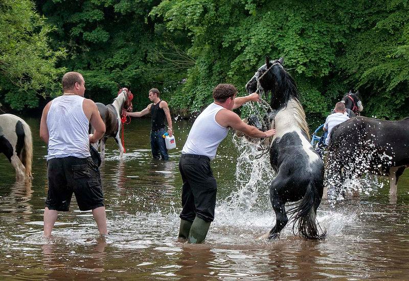 Washing the Horses