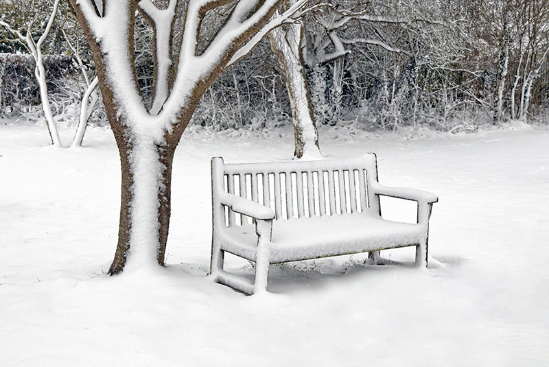 Winter Bench, Firs Road Cemetary