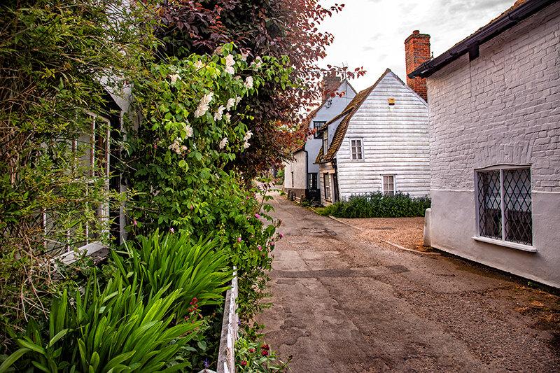 Rupert's Front Garden - The Lane