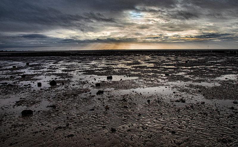 Saltmarsh - Sunday