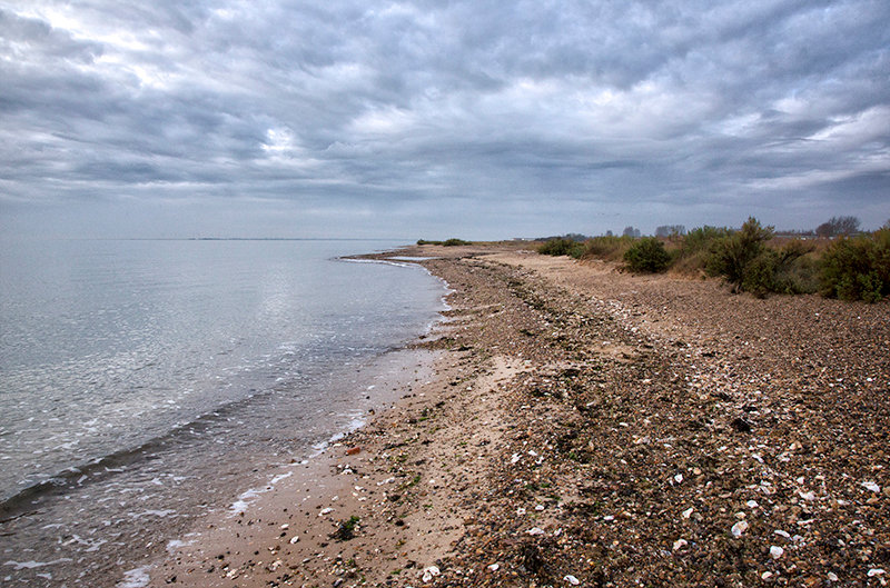 Sand, Shells and Sky.