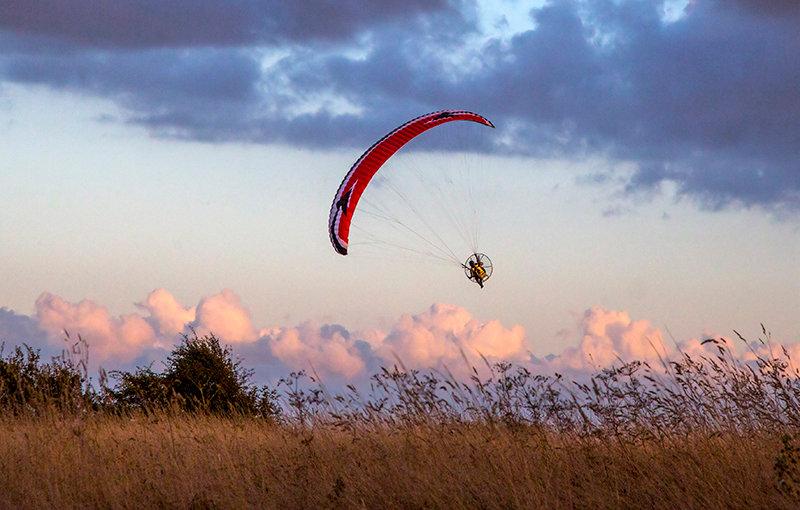Paraglider - Cudmore Grove