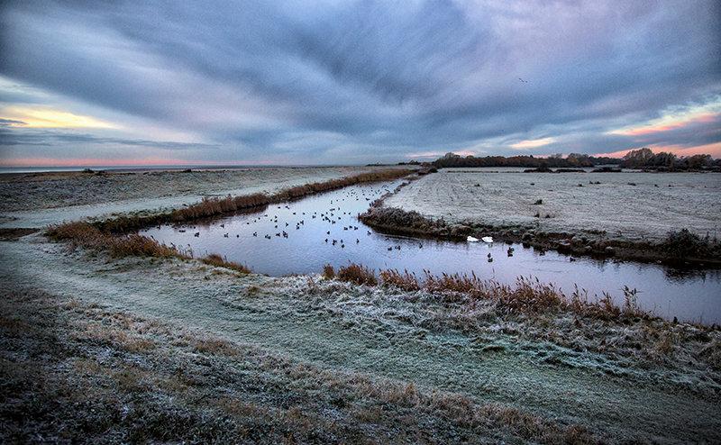 Beside the Grazing Marsh
