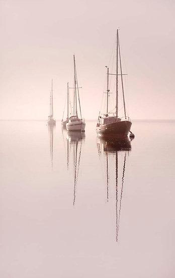 Early Morning - Shingle Point