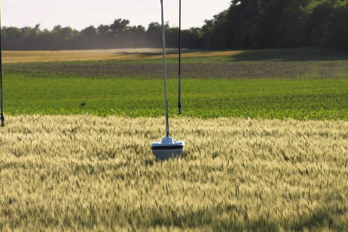 The non-invasive soil-moisture-sensor is cruising through a wheat field.