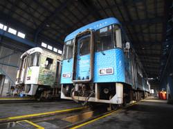local train series 8000