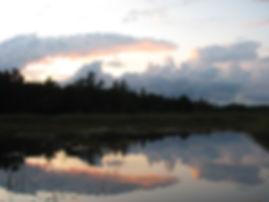 Presqu'ile marsh in evening - IS.jpg