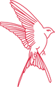 21-DTR-bird-outline-red.png