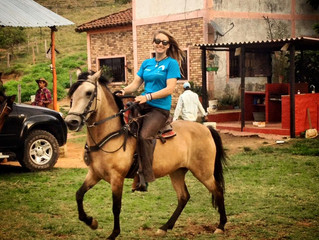 Horse shopping the colombian way-Part II