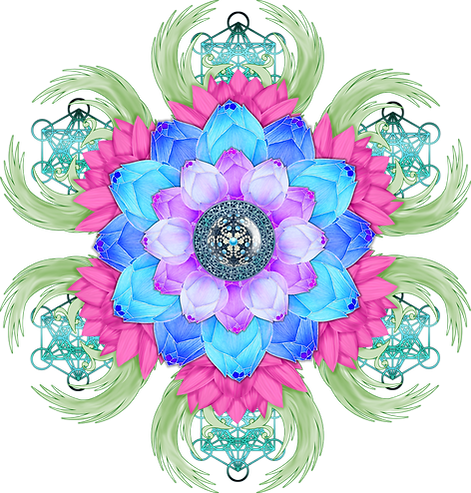 lotus-flower-3650472_1920.png