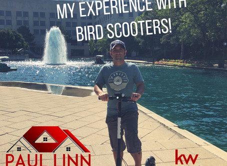 What You Need To Know About Bird Scooters in Indianapolis, IN