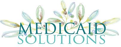 MedicaidSolutionsFinal.jpg