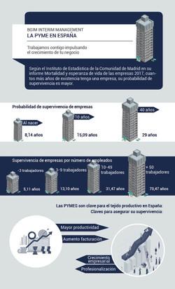 """infografia para """" BGIM Interim Management"""""""