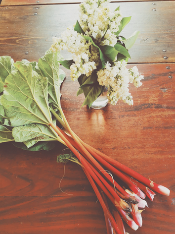 rhubarb and flowers from the garden.png
