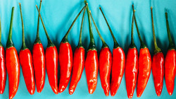 Red chillis in a line