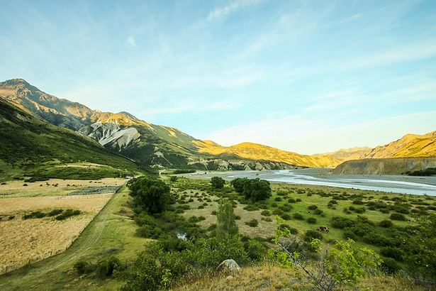 Driftwood Eco-Tours | Exclusive Adventures & Guided Tours of Rural NZ | Muzzle Station Tour