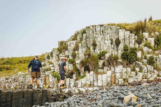 Driftwood Eco Tours Chatham Island - Rēkohu/Wharekauri Tour