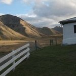 Two day tour into the Molesworth high country station