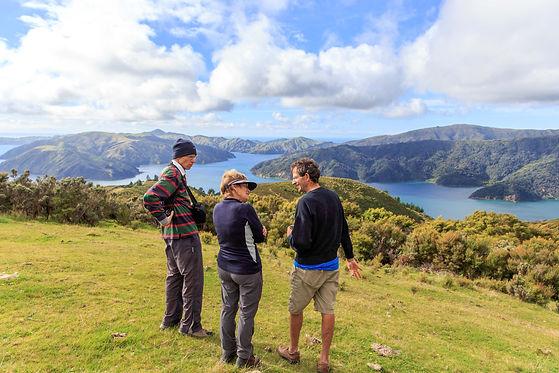 Driftwood EcoTours D'urville Island tour, Marlborough Sounds, history, heritage & nature tours