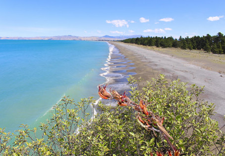 Marlborough NZ, the way the World should be