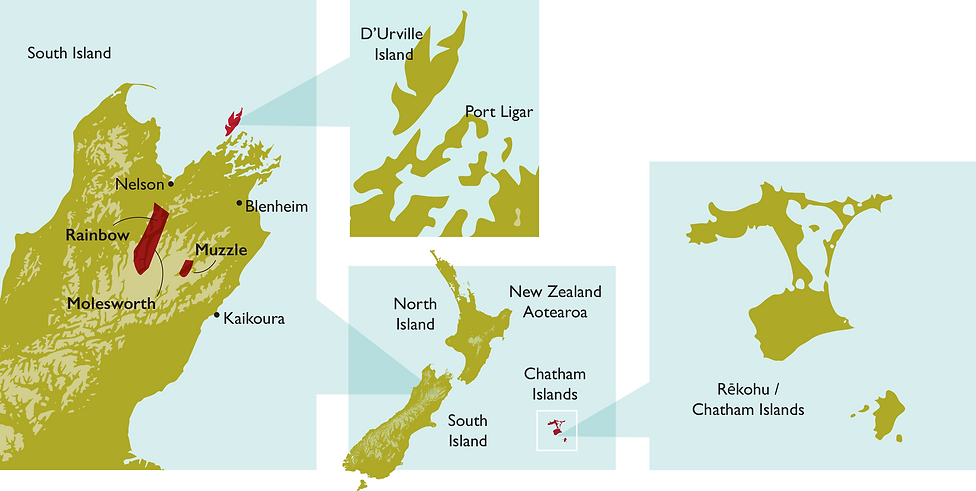 Driftwood Eco Tours South Island nature, heritage & histroy tours