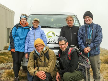 Alpine Flora Tour 2018 Rebecca Bowater