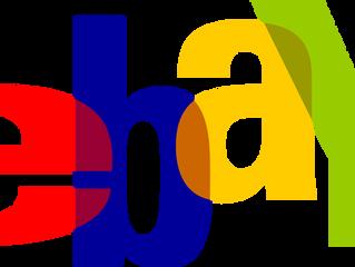Ebay Survey Results