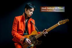Live Prince Tribute Show