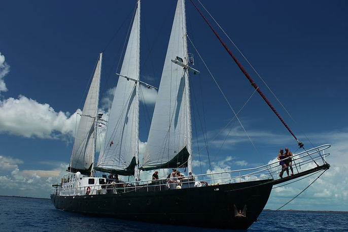 undersail on bow.jpg