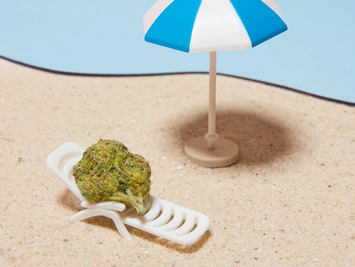 7 Relaxing Weed Strains