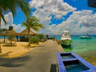 Cozumel-Scuba-Diving-Casa-del-Mar-Dive-P