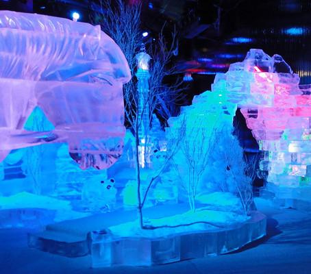 Passeio gelado. O mundo do gelo em Macau.