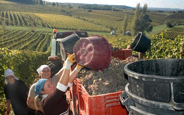 rota-vinho-bergerac