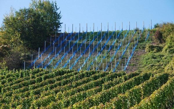 rota-vinho-luxemburgo