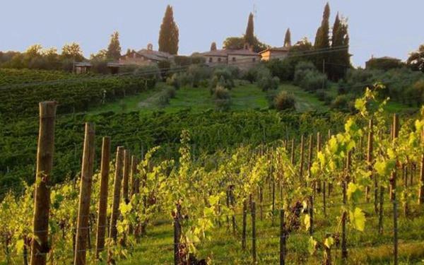 rota-vinho-toscana
