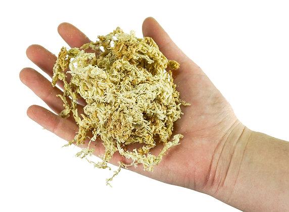 Long Fiber Sphagnum Moss - Anti-Fungal/Anti-Bacterial - Multiple Sizes