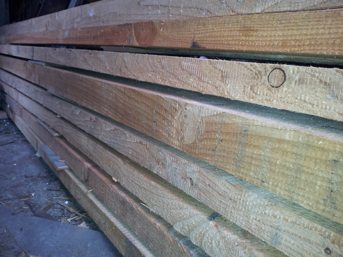 drewno - modrzew