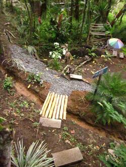 Bamboo Bridge Pathway