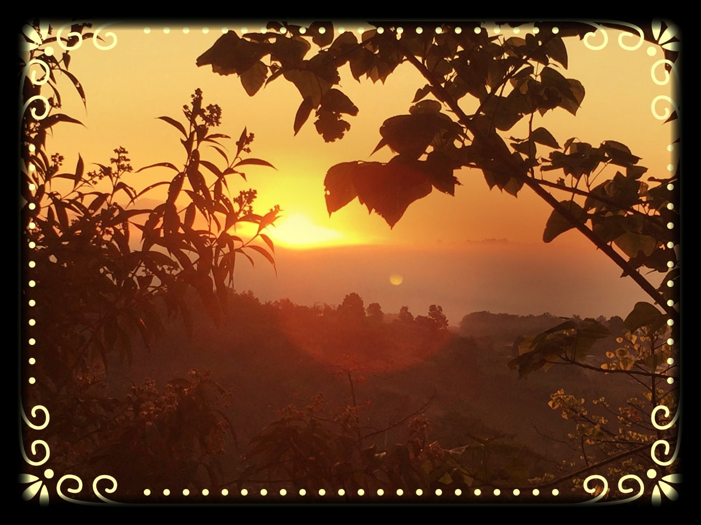 Sunshine Horizons