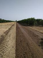 IRRIDAN Road stabilization & Dust control