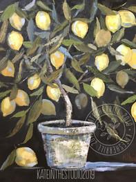 LemonTree-on-Black_KSherrill_SML.jpg