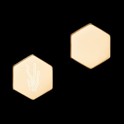 Ocean Earrings (MAG^)