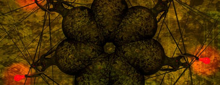 The sunrise of the stonertronic oracle