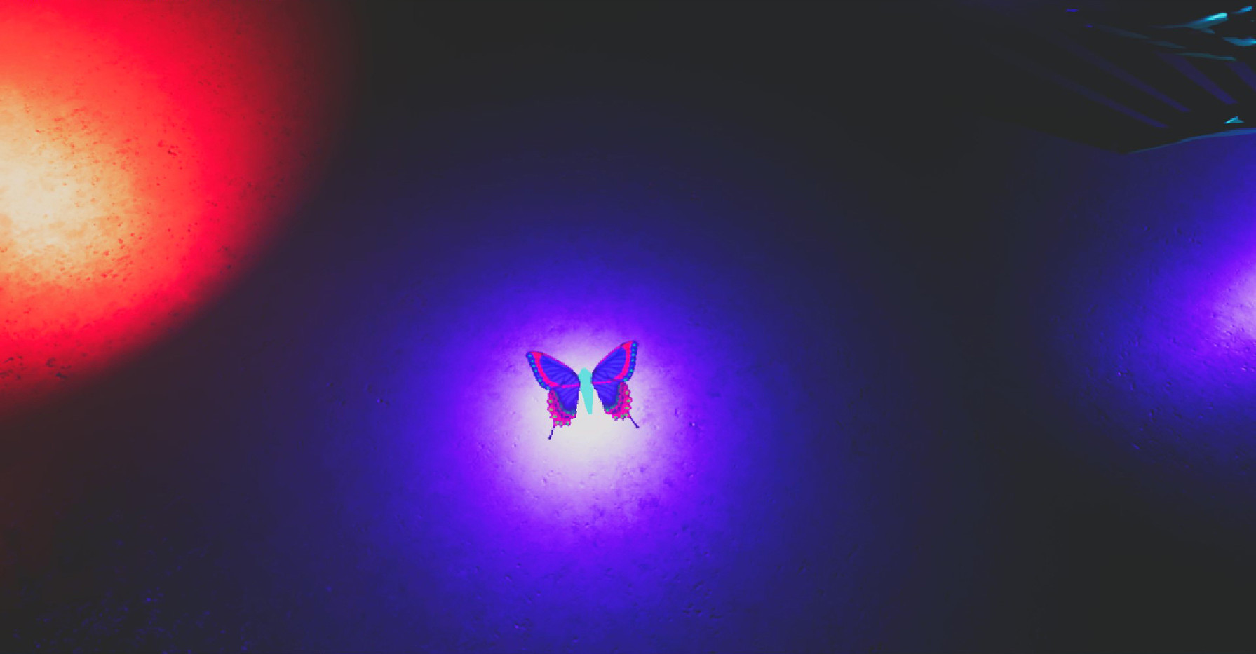 The Robot Butterfly Music (14)R