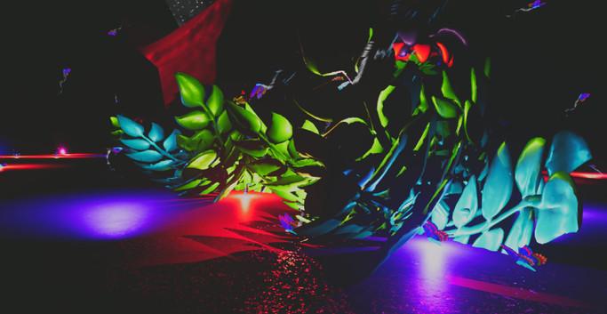 The Robot Butterfly Music (19).jpg