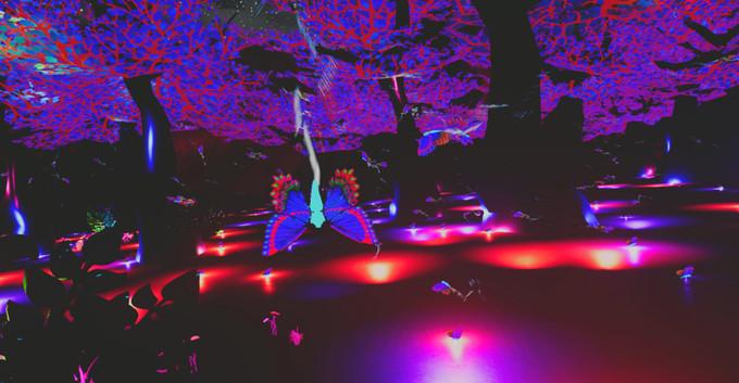The Robot Butterfly Music (6).jpg