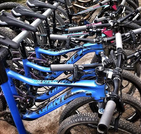 taupo bike servicing
