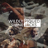Wildly Shine Cover.jpg