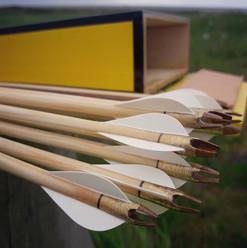14 fresh pishrev flight arrows, and the